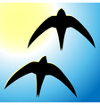 Flying swallow vector image