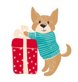 cute dog in warm winter sweater with gift vector image