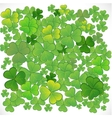 Background with clover EPS10 vector image vector image