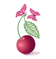 cherry and butterfly vector image vector image