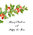 New Year and Christmas Card - Vintage Hollyberry vector image