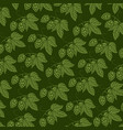 background pattern with hops with hops vector image