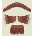 Mustache collection vector image