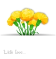 Carnation flowers design vector image
