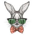 rabbit in glasses sketch portrait vector image