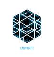 hexagon volume labyrinth abstract logo vector image