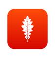 oak leaf icon digital red vector image