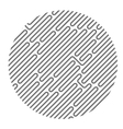 Circle filled with diagonal maze pattern vector image vector image