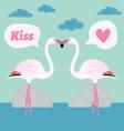 pair of flamingo bird cartoon card vector image