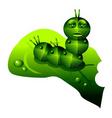 robot caterpillar vector image vector image