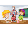 Students learning about human anatomy vector image