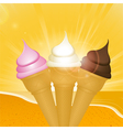 Tropical sunset ice creams vector image