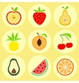Flat fruit icons vector image