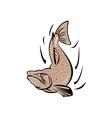Angry Salmon Fish Jumping Retro vector image