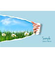 Nature background with green grass and sky and vector image