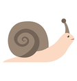 Snail isolated on white vector image