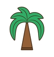 green palm beach tree vector image