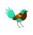 Small bright tropical bird colorful vector image