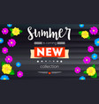 summer new collection banner background black vector image