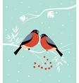 Two birds in winter vector image
