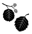 Alder Leaves Pictogram Set vector image vector image