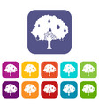 pear tree with pears icons set vector image