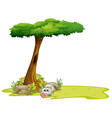 A cat playing under the tree vector image