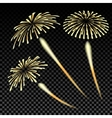 Bright fireworks in honor of the Feast on gradient vector image
