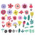 flowers floral set vector image