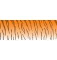 tiger fur vector image vector image