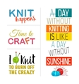 Hand Knit Quote Set vector image