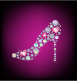 Ladies shoes vector image vector image