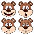 Bear face vector image vector image