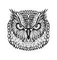 Zentangle stylized eagle owl head Tribal sketch vector image