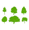 tree green silhouettes oak poplar red maple vector image