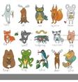 Wild animalsisolated Woodland doodle set vector image