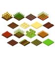 Farm Set Isometric View vector image
