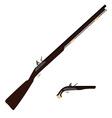 Musket rifle and gun vector image