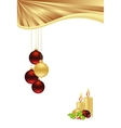 template gold vector image
