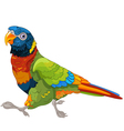 Running Lory Parrot vector image vector image