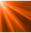 Orange luminous rays vector image vector image