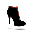 Ankle boots shoes vector image