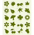 flower leaves fruits icons vector image