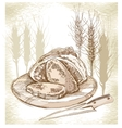 Sketch of bread and spikes vector image