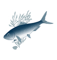 fish herring vector image vector image