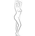 nude woman vector image vector image