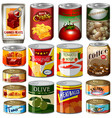 different kinds of food in can vector image