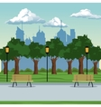 city park brench lamp postlight trees vector image