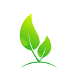 green leaf nature bio ecology plant logo vector image