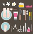 manicure and pedicure flat design vector image